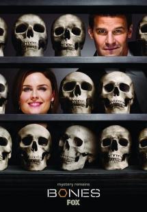 Bones - Season 11 (2015)