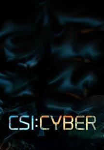 CSI: Cyber Season 1 (2015)