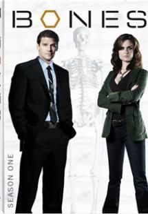 Bones - Season 1 (2005)