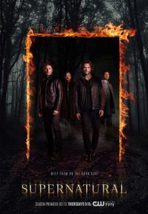 Supernatural - Season 12 (2016)