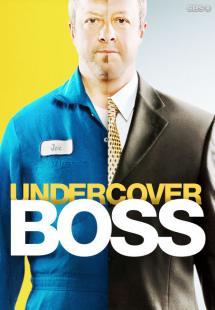 Undercover Boss - Season 8 (2016)