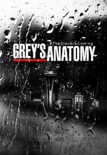 Grey's Anatomy - Season 7 (2010)