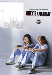 Grey's Anatomy - Season 8 (2011)