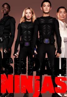 Supah Ninjas - Season 2 (2012)