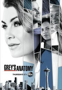 Grey's Anatomy - Season 16 (2019)
