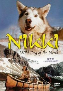 Nikki, Wild Dog of the North (1961)