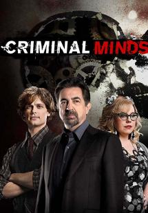 Criminal Minds - Season 13 (2017)