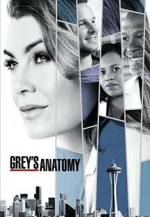 Grey's Anatomy - Season 14 (2017)