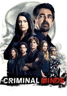 Criminal Minds - Season 14 (2018)