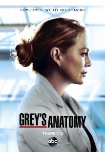 Grey's Anatomy - Season 17 (2020)