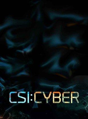 CSI: Cyber - Season 2