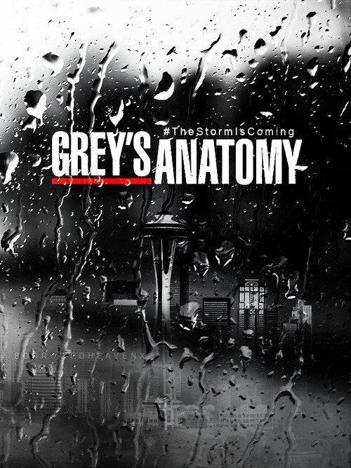 Grey's Anatomy - Season 7 (2010)