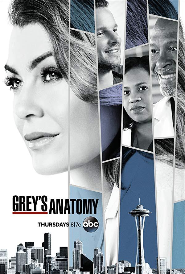 Grey's Anatomy - Season 16 (2019)