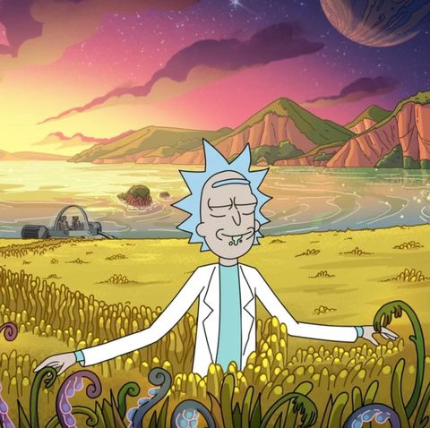 Rick and Morty - Season 5 (2021)